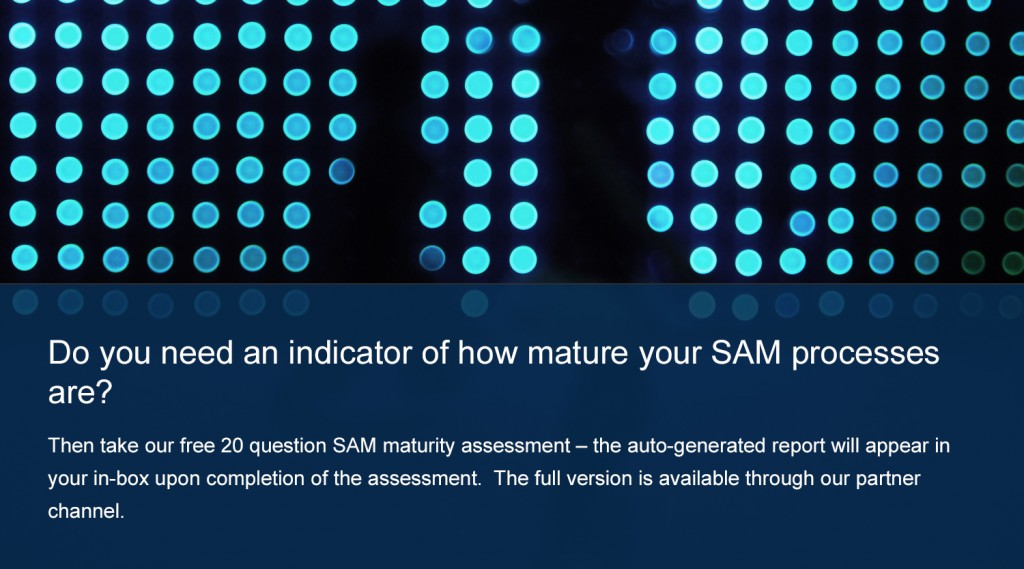 Do you need an indicator of how mature your SAM processes are?
