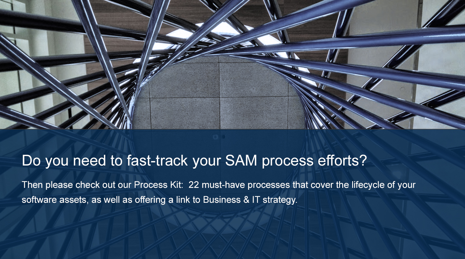 Do you need to fast-track your SAM process efforts?